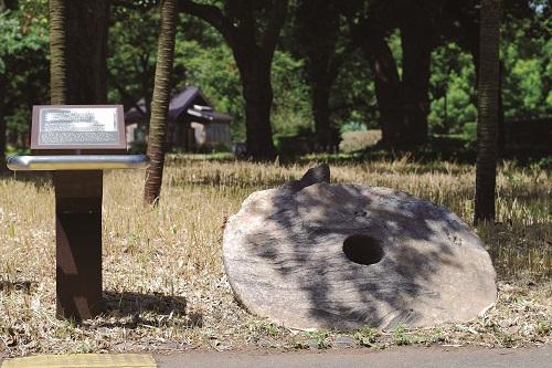 P13.ヤップ島の石貨_500.jpg